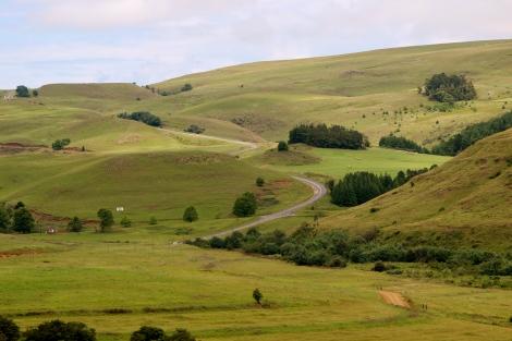 Rolling green hills forever.