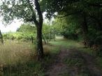 Farm trail run.